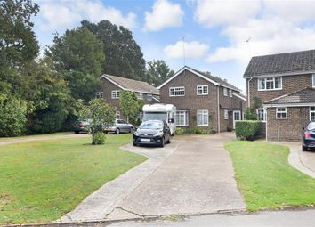Rainbow Way, Storrington, West Sussex RH20. 4 bed detached house