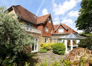 Thumbnail 7 bed detached house for sale in West Side Common, London