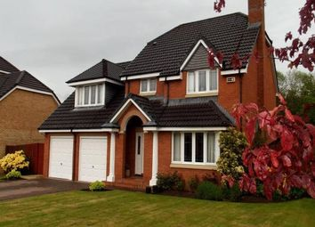 Thumbnail 4 bed detached house to rent in Smithycroft, Ferniegair, Hamilton
