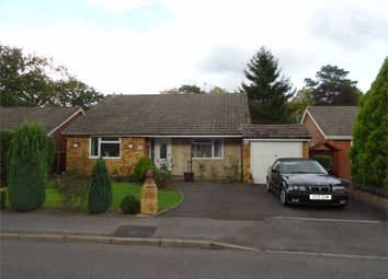 Thumbnail 2 bed detached bungalow to rent in Lowther Road, Wokingham, Berkshire
