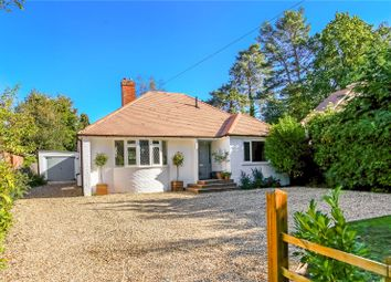 Thumbnail 4 bed detached bungalow for sale in Finchampstead Road, Finchampstead, Wokingham, Berkshire