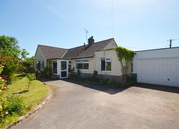 Thumbnail 4 bed detached bungalow for sale in Stour Row, Shaftesbury
