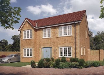 Thumbnail 4 bed detached house for sale in Walker Drive, Stamford Bridge, York