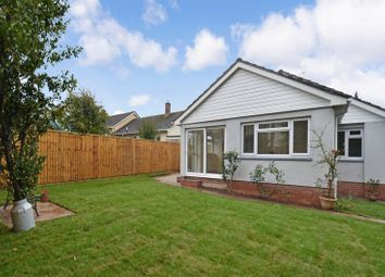 4 bed detached bungalow for sale in Lang Way, Ipplepen, Newton Abbot TQ12