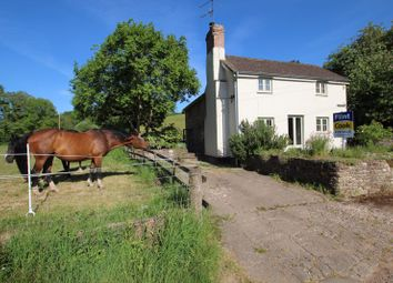 Thumbnail 3 bed cottage for sale in Brockhampton, Hereford