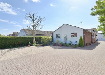 Thumbnail 4 bed bungalow for sale in Watton Road, Holbury, Southampton
