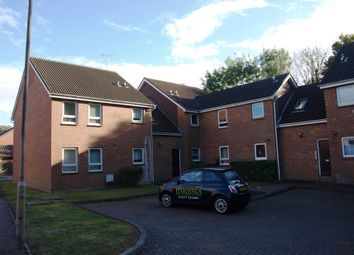 Thumbnail Studio to rent in Roth Drive, Hutton