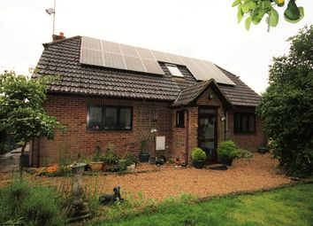 Thumbnail 4 bed detached house to rent in Linwood, Ringwood