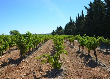 Thumbnail Property for sale in Lezignan Corbieres, Hérault, France