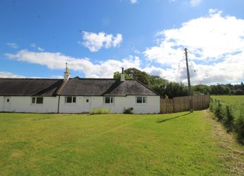 Thumbnail 2 bed bungalow to rent in Marykirk, Laurencekirk