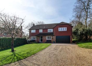 Thumbnail 5 bed detached house for sale in Four Marks, Alton, Hampshire