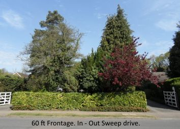 Thumbnail 4 bed detached bungalow for sale in Spurgate Hutton Mount, Brentwood