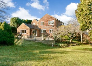 Thumbnail 4 bed detached house for sale in Thorn Close, Wrecclesham, Farnham