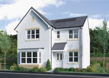 "Thumbnail 4 bed detached house for sale in ""Strachan"" at Mcdonald Street, Dunfermline"