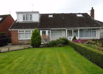 Thumbnail 3 bed semi-detached bungalow to rent in Garstang Road, Catterall, Preston