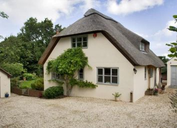 Thumbnail 3 bed cottage to rent in Sway, Hampshire