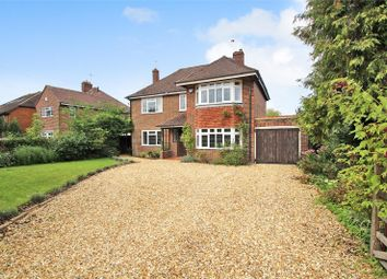 Thumbnail 4 bedroom detached house to rent in Southgate Road, Crawley