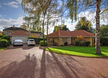 Thumbnail 3 bed detached bungalow for sale in Juniper Close, North Gosforth, Newcastle Upon Tyne