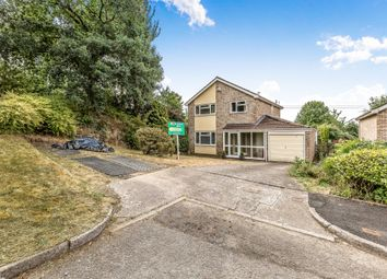 Thumbnail 4 bed detached house for sale in The Dell, Tonteg, Pontypridd
