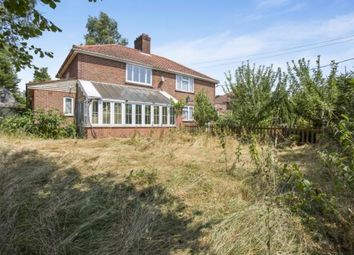 Thumbnail 3 bed semi-detached house for sale in Bunwell, Norfolk