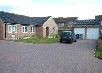 Thumbnail 3 bedroom detached bungalow to rent in Bell Trees, Lakenheath, Brandon