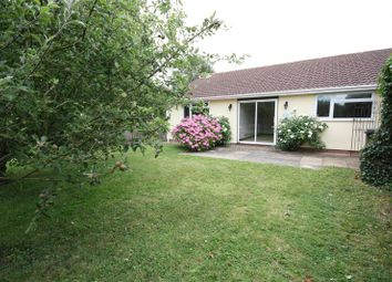 Thumbnail 3 bed semi-detached bungalow to rent in Brendon Road, Watchet