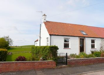 Thumbnail 3 bedroom semi-detached house to rent in St Helens Gardens, Cornhill On Tweed, Northumberland
