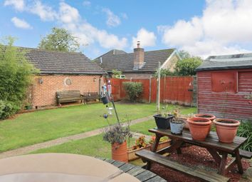 4 bed detached bungalow for sale in Curdridge Lane, Waltham Chase, Southampton SO32