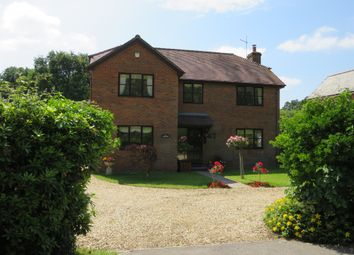 Thumbnail 4 bed detached house for sale in Lyndhurst Road, Landford, Salisbury