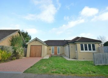 Thumbnail 3 bed bungalow to rent in Camps Close, Cambridge