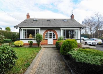 Thumbnail 4 bedroom detached house for sale in Carrowreagh Lane, Dundonald