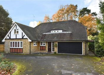 Thumbnail 4 bed detached house for sale in Mulroy Drive, Camberley, Surrey
