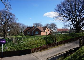 Thumbnail 3 bedroom detached bungalow for sale in Butley, Woodbridge
