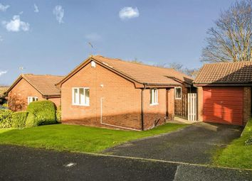 Thumbnail 3 bed detached bungalow to rent in Plovers Lane, Helsby, Frodsham