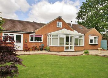 Thumbnail 4 bed bungalow for sale in Orchard Close, Barrow-Upon-Humber