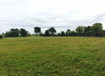 Thumbnail Equestrian property for sale in Church Lane, Wheatacre, Beccles