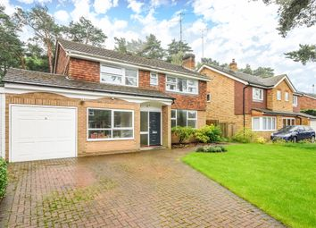Thumbnail 4 bed flat to rent in Heathpark Drive, Windlesham