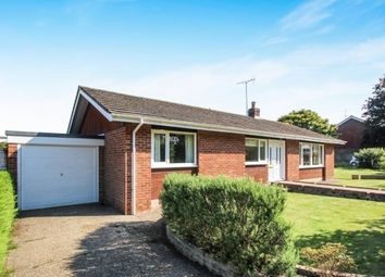 Thumbnail 3 bed bungalow to rent in Furners Mead, Henfield