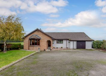 Thumbnail 4 bed bungalow for sale in Glackmore, North Kessock, Inverness