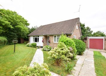 Thumbnail 2 bed bungalow for sale in Silverdale, Coldwaltham, West Sussex