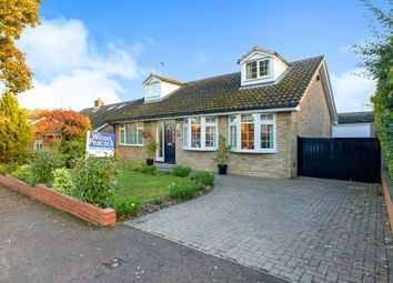 Thumbnail 4 bed bungalow for sale in Loring Road, Sharnbrook, Bedford