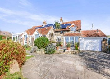 Thumbnail 3 bed detached house for sale in Brighstone, Newport, Isle Of Wight