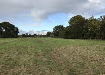Thumbnail Land to rent in Spellbrook, Bishop's Stortford, Hertfordshire