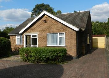 Thumbnail 3 bed bungalow to rent in Breckhill Road, Mapperley