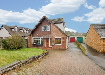 Thumbnail 4 bed detached house for sale in High Road, Stapleford, Hertford