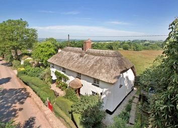 Thumbnail 4 bed detached house for sale in Nr Payhembury, Honiton, Devon
