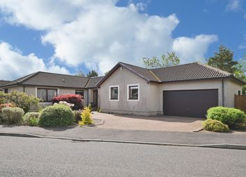 Thumbnail 4 bed detached bungalow for sale in Commander's Grove, Braco, Dunblane