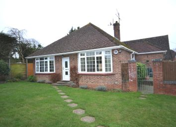 Thumbnail 3 bed detached bungalow for sale in Park Avenue, Old Basing, Basingstoke