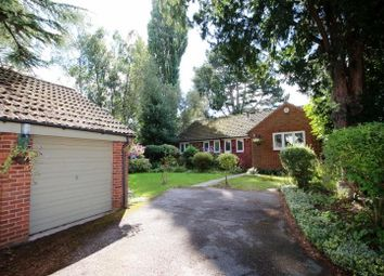 Thumbnail 4 bed bungalow to rent in Whitecross Square, Leckhampton, Cheltenham