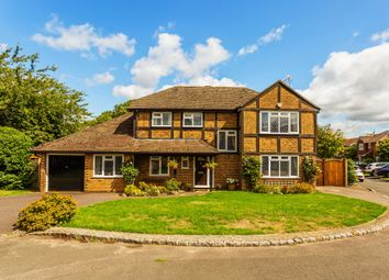 Thumbnail 4 bedroom detached house for sale in Dunlin Rise, Guildford